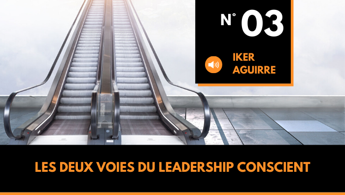 couverture du podcast un accent sur le nouveau leadership episode 3 Les deux voies du Leadership Conscient