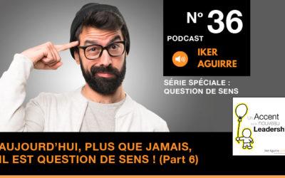 Episode n°36 : Aujourd'hui, plus que jamais, il est question de sens (partie 6) – Chemin ou Mission de Vie ?